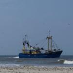 netten visserij