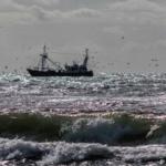 visserij nederland